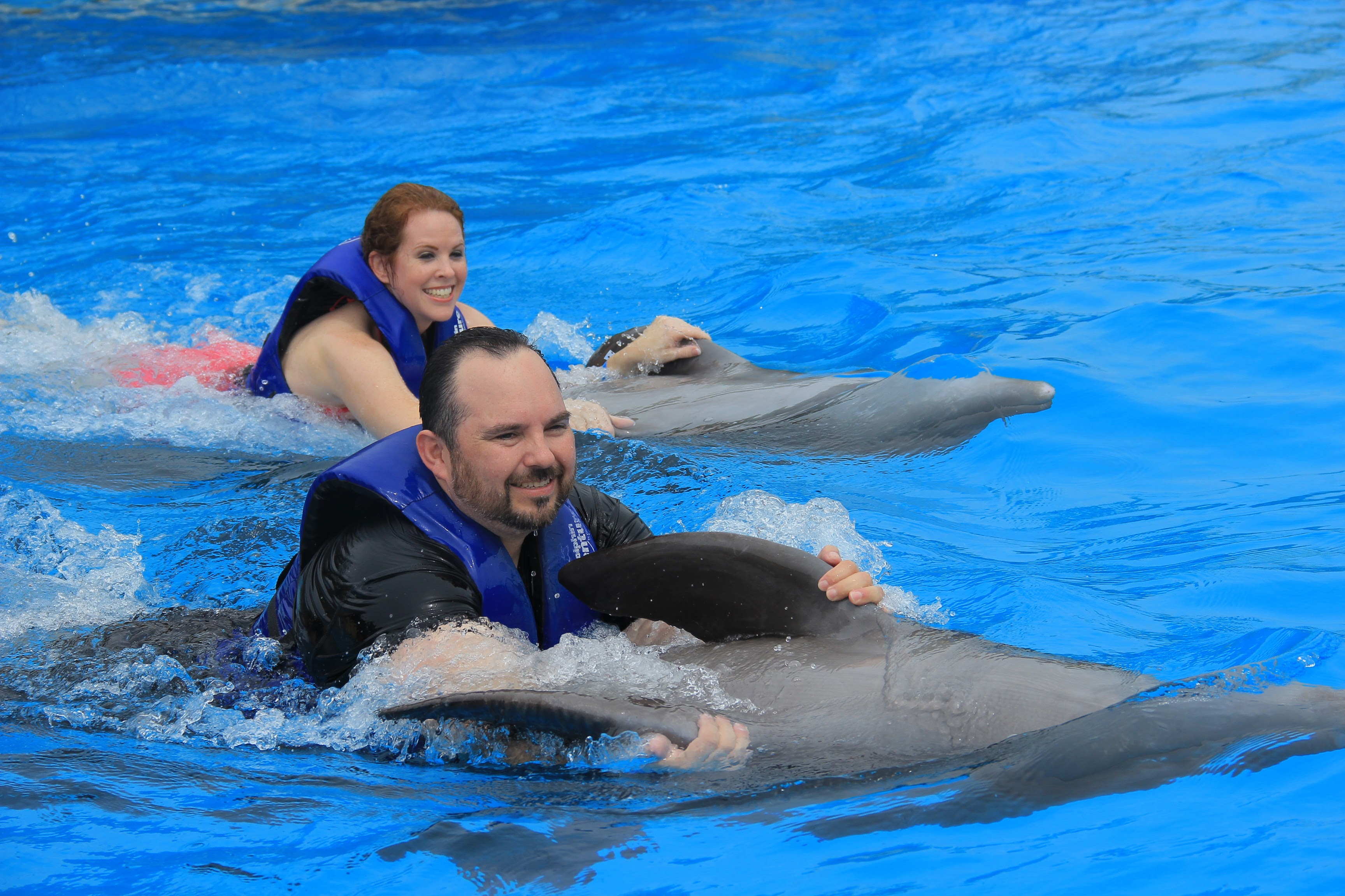 Frank and Shannon Gurnee Dolphins Puerto Vallarta Mexico About Us