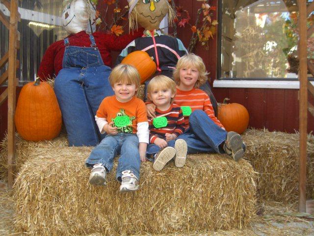Remlinger Farms October 2009 (2)