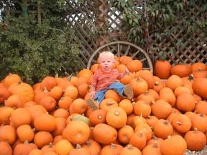 pumpkins 2004 3