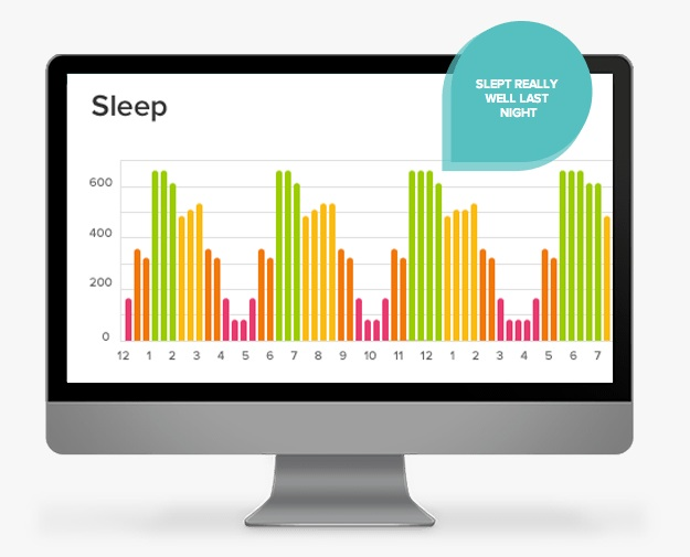 Fitbit One Stats