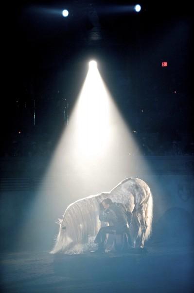 Kneeling Liberty Horse