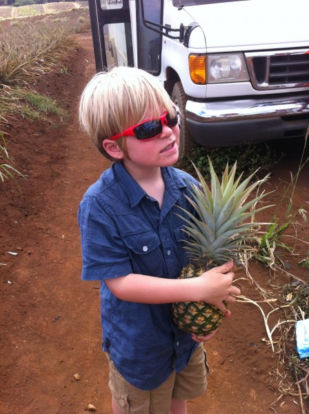 Maui Pineapple Tour 21