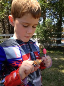 Carter holding the butterfly.
