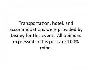 Disney Trip Disclosure