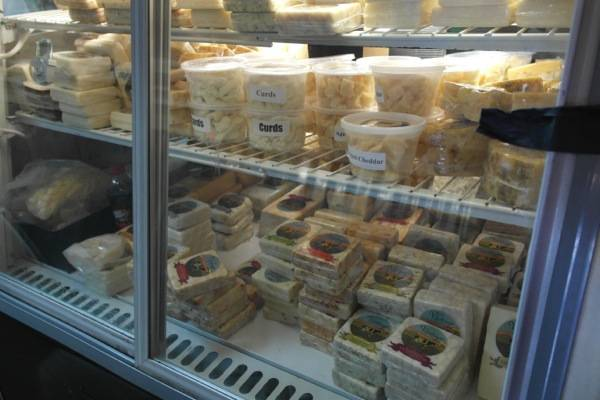 Bravo Farms Cheese Tasting Visalia 4