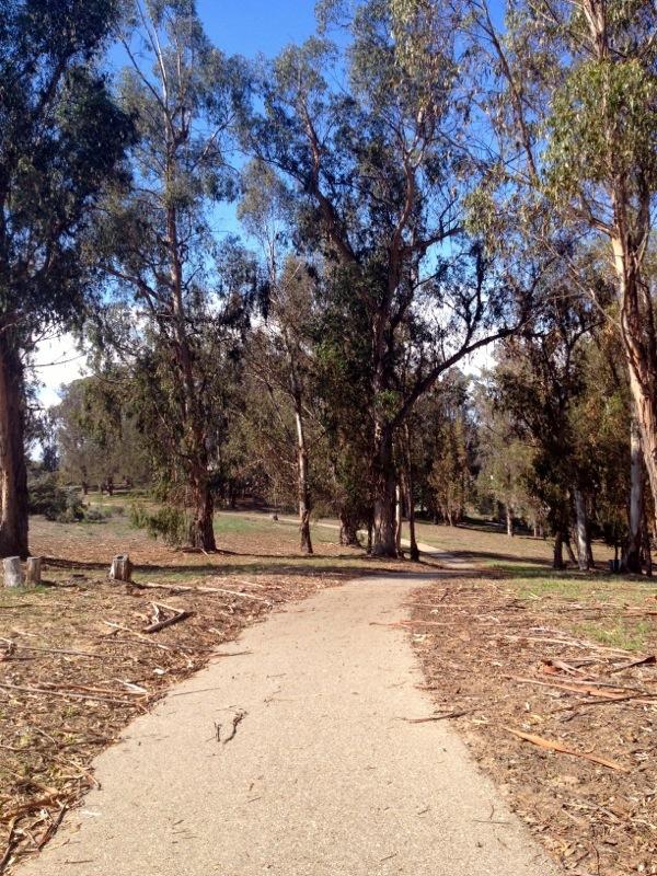 WK 14 - Nipomo Park