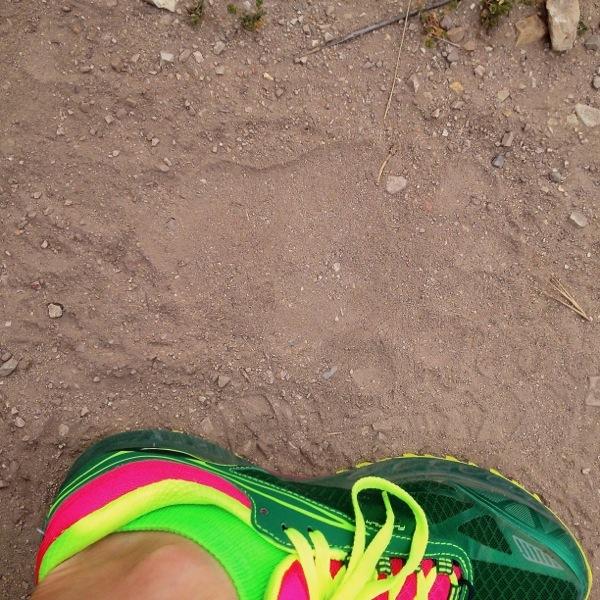Week 21 - Lopez Lake Hike