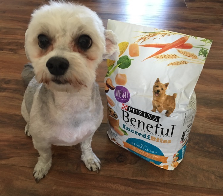#Beneful #FriendsOfBeneful #ad